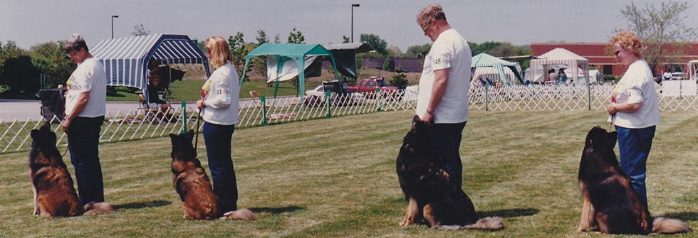 Featured Event - Obedience